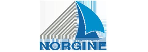 www.norgine.de